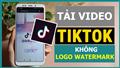 Hướng dẫn tải xuống video Douyin hàng loạt - TikTokPlus