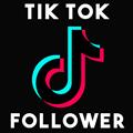 Follow TikTok theo Id, người follow hoặc người comment video - TikTokPlus