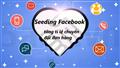 Mẹo Seeding Facebook tăng tỉ lệ chuyển đổi đơn hàng  nhanh chóng