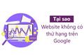 Tại sao website mãi không có thứ hạng trên Google?