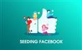 Chiến lược Seeding Facebook hiệu quả kết hợp giữa Group với KOL