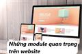 Tìm hiểu một số Module cơ bản khi thiết kế website kinh doanh